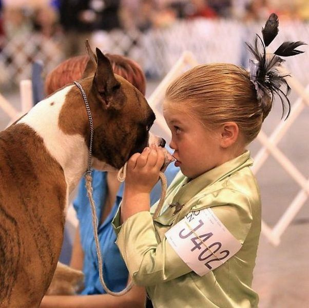Красивые фото выражение лица, девочка, конкурс, собака