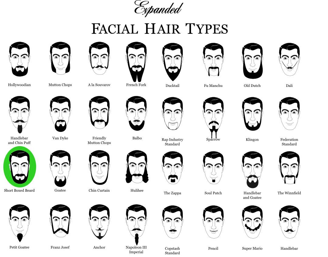 кисти борода для фотошопа: