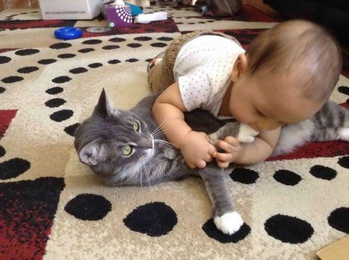 Красивые фото кошка, малыш, ребенок