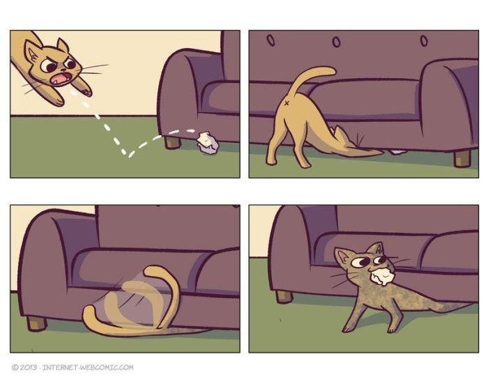 Фотоприкол онлайн комикс, кот, питомец, прикол