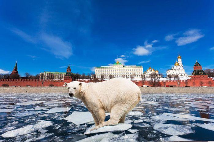 национальность, русские, турист, манеры, признаки, внешность
