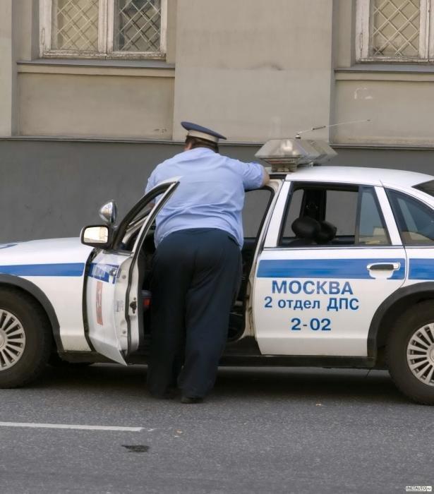 Дорожный юмор (56 фото)