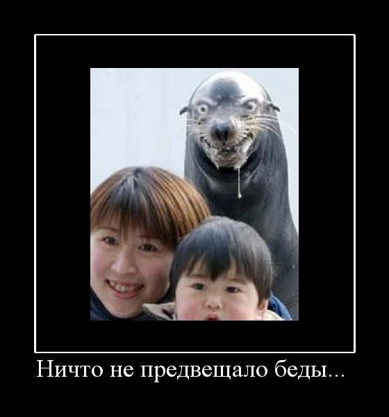 http://de.fishki.net/picsw/082009/28/demotiv/054.jpg