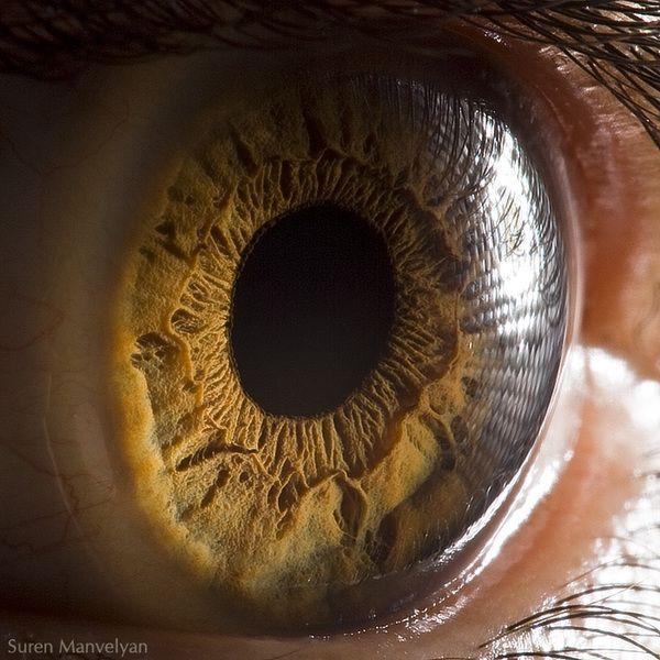 Макросъемка глаза (8 фото)
