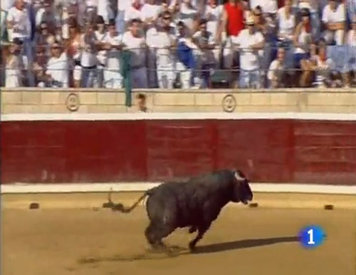 В Испании зрителей корриды покалечил разъяренный бык (видео)