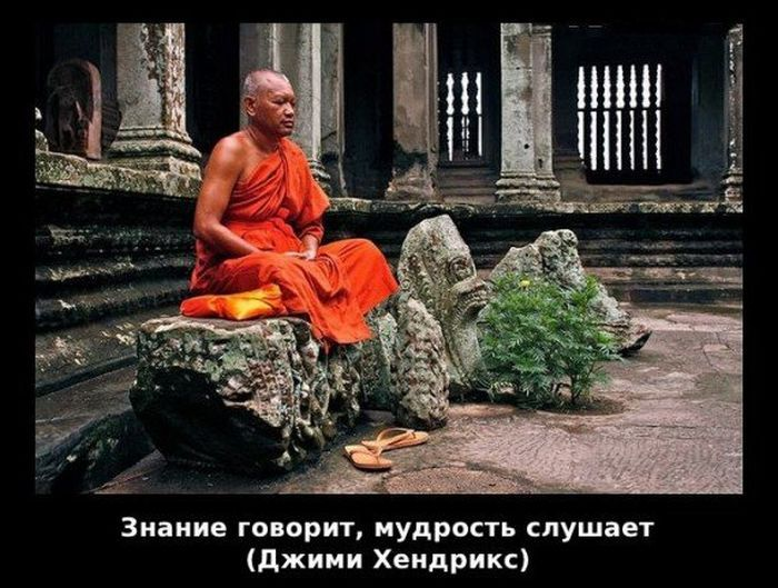 мудрость в картинках и фото кусочек