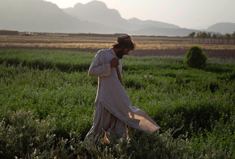 war041 Афганистан июль 2011