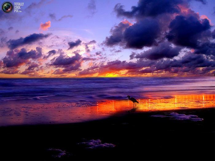 Природа удивительной красоты (43 фото)
