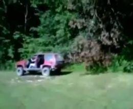 Джип против дерева