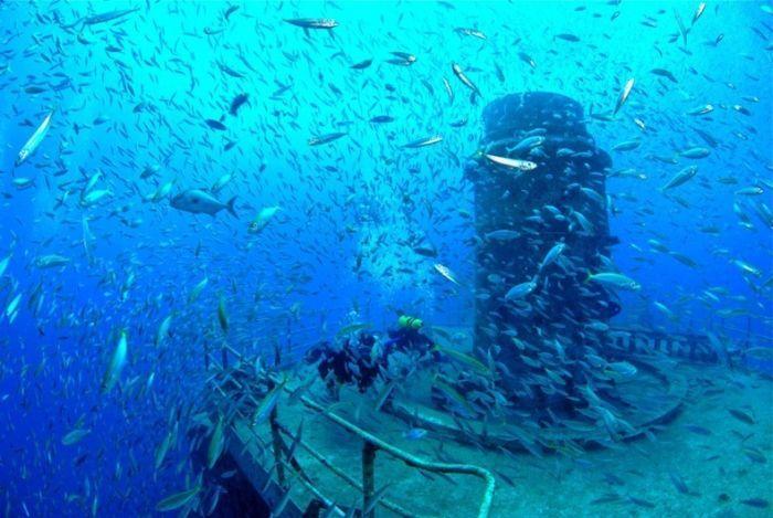 Австралийский морской фрегат стал подводным рифом (8 фото)