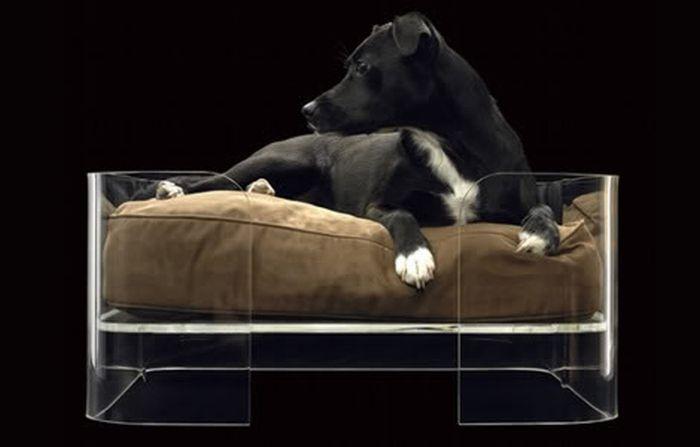 Элитная мебель для собак (6 Фото)