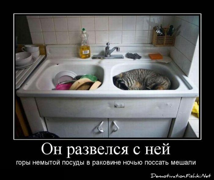 играли демотиватор на кухне один традиционный