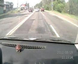 Перебежал Горьковское шоссе