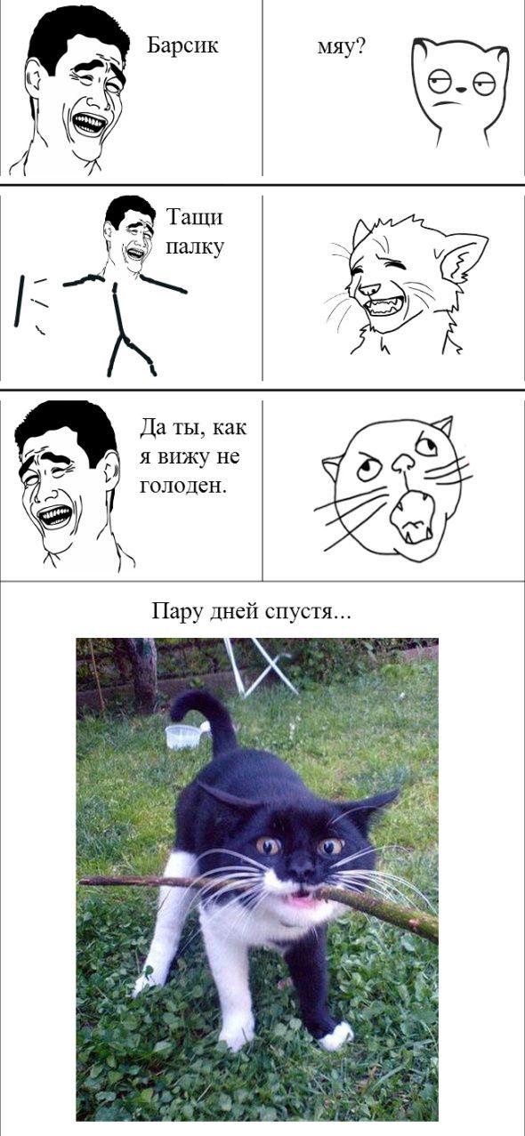 Приколы картинки с надписями комиксы с животными, вставить