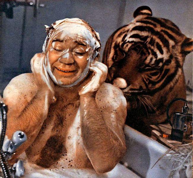 Секреты съемки Леонова с тигром (7 фото)