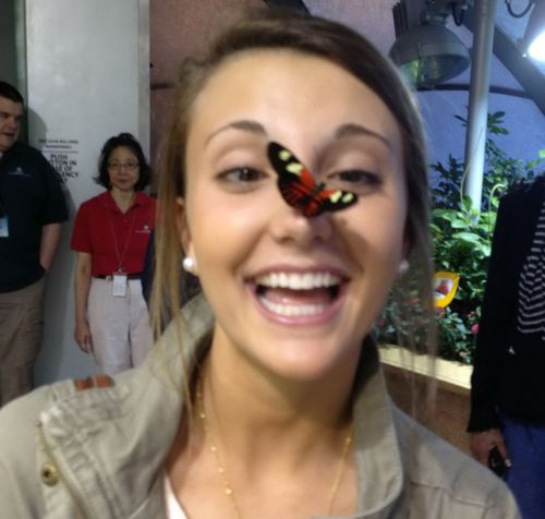 Фотоприкол онлайн бесплатно бабочка, взгляд, глаза, девушка, на носу