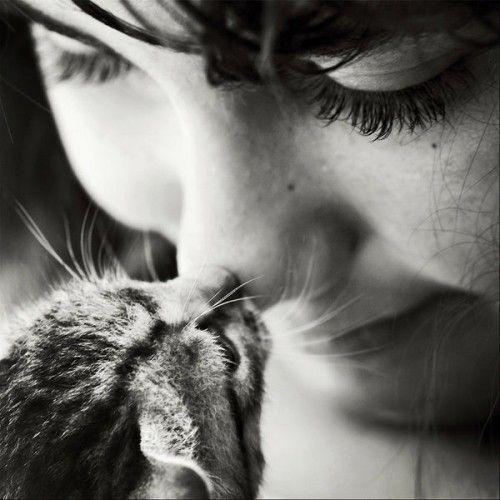 Девушки и кошки 34 фото
