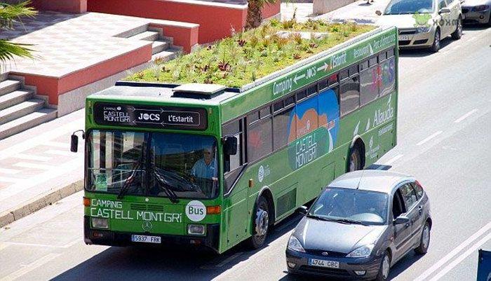 авто, клумба на крыше, автобус