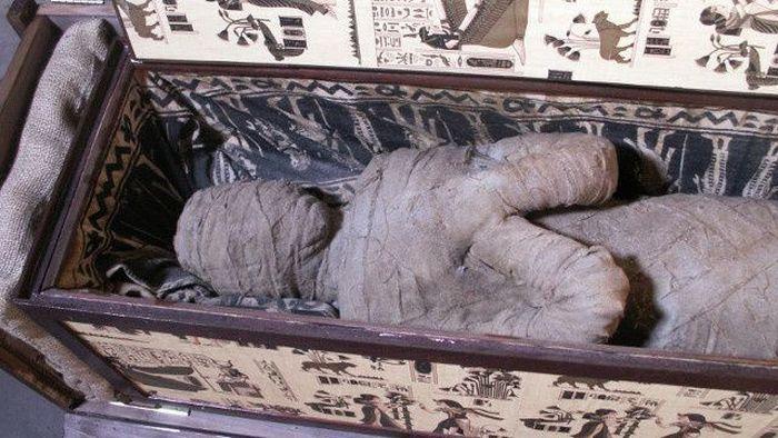 находка, мумия, неожиданность