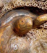 Удивительная деревянная скульптура (15 фото)