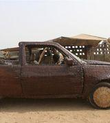 Авто из пальмового тростника