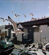 Снимки из жизни, сделанные камерами Google Street View (31 фото)