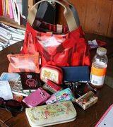 Содержимое женских сумочек (13 фото)