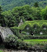 Вертикальное озеленение домов