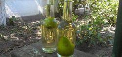 Груши в бутылках