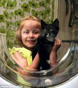 Котенок чудом выжил после часа стирки в машинке