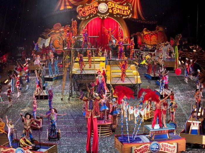 цирк, развлечения, факты