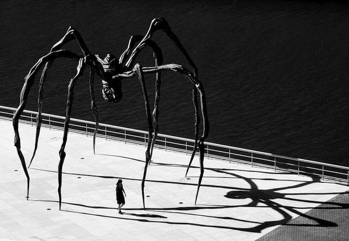 скульптура, паук, токио