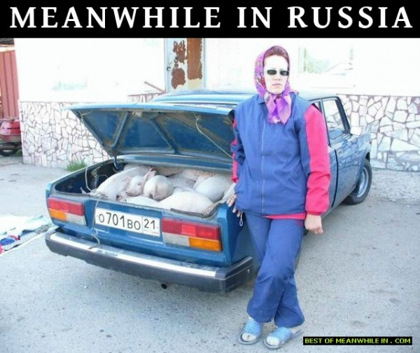 мем, россия, meanwhile in russia
