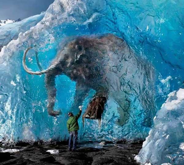 Fotos asombrosas del Mundo ! !