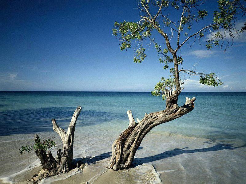 Райские уголки планеты (20 фото)