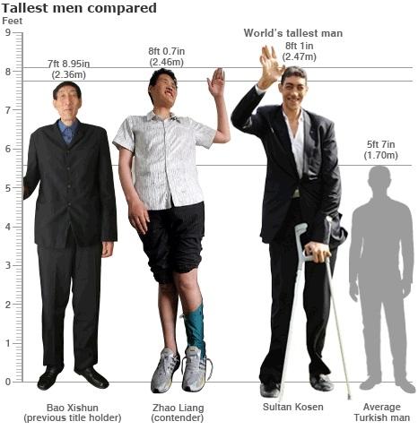 Самый высокий человек в мире 55 фото