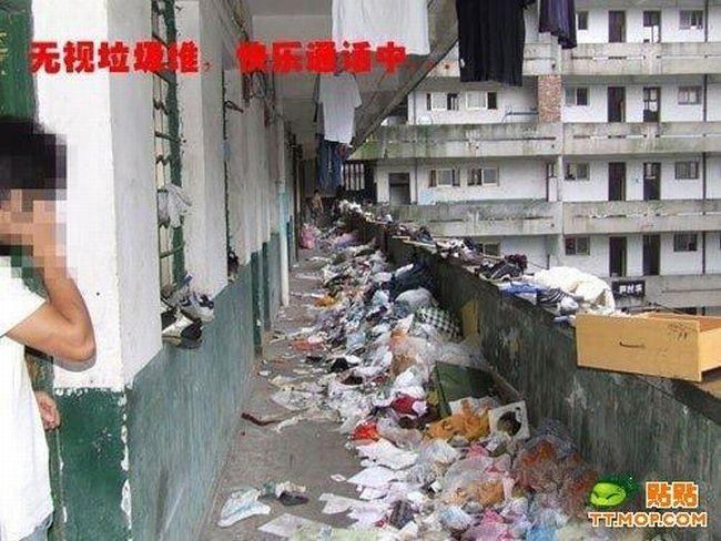 Самое грязное общежитие (8 фото)