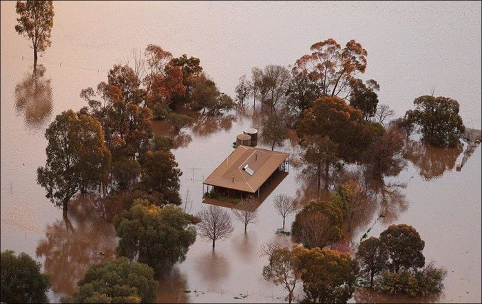 Наводнение в Австралии (7 фото)