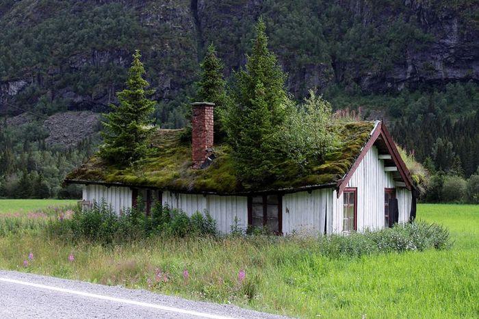 Норвежские крыши  (12 фото + текст)