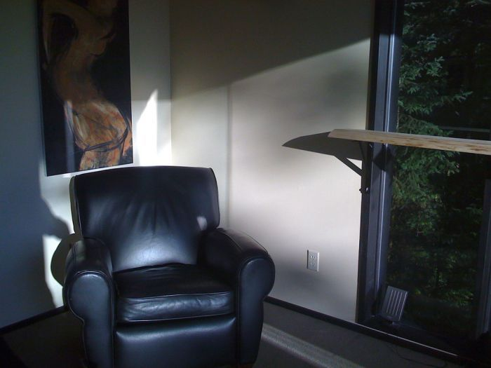 Американец построил себе офис на дереве (5 фото)