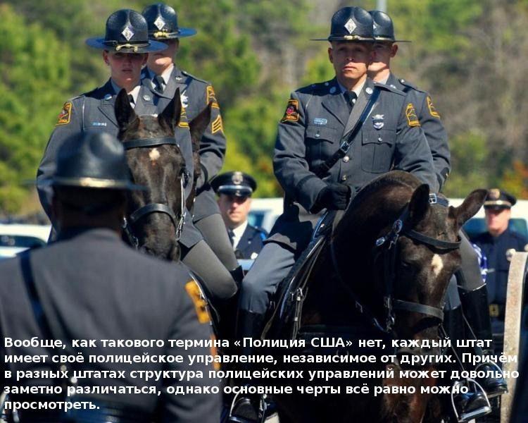 10 фактов о полиции США (10 фото)