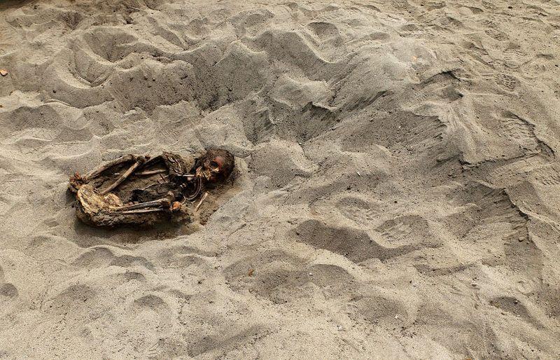 bones02 В Перу обнаружены останки принесенных в жертву детей