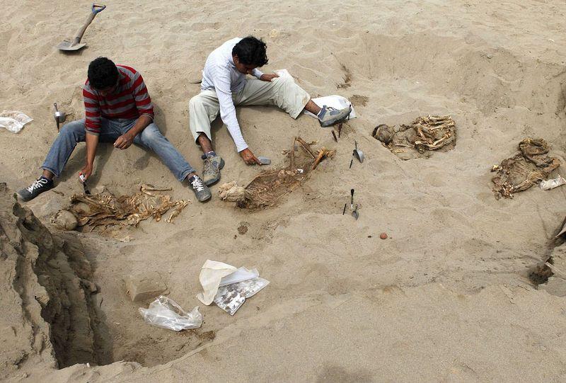 bones03 В Перу обнаружены останки принесенных в жертву детей