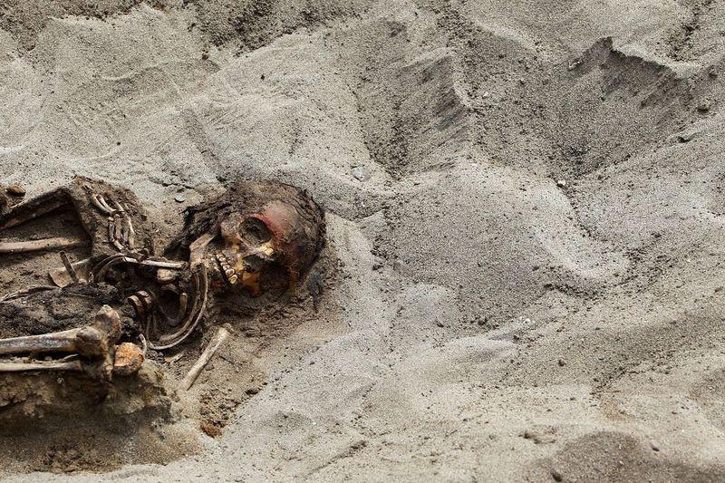 bones04 В Перу обнаружены останки принесенных в жертву детей