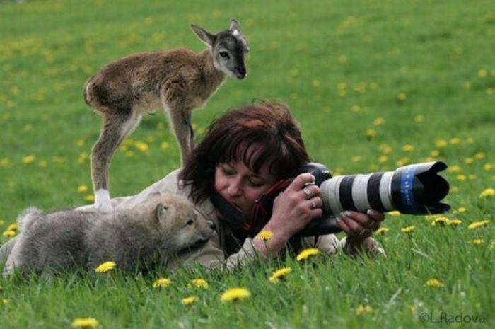 Очень красивые фотографии (60 фото)