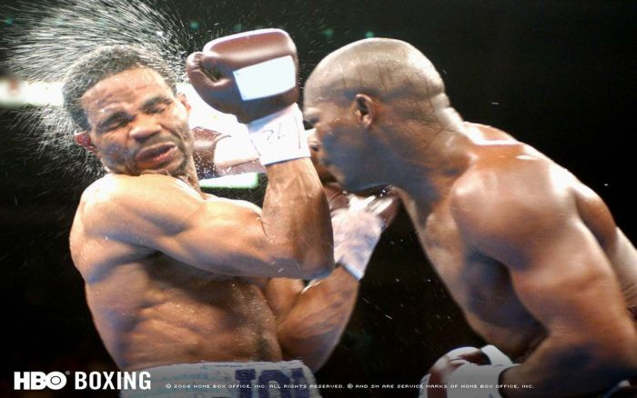 Точный боксерский удар (36 фото)