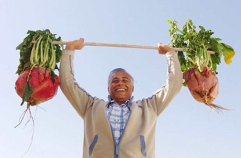 veggies05 Гигантские овощи