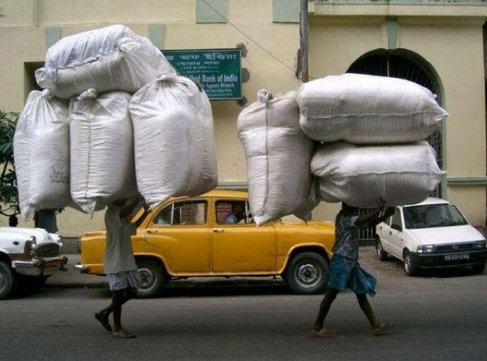 Такое возможно только в Индии. Часть 2. (72 фото)