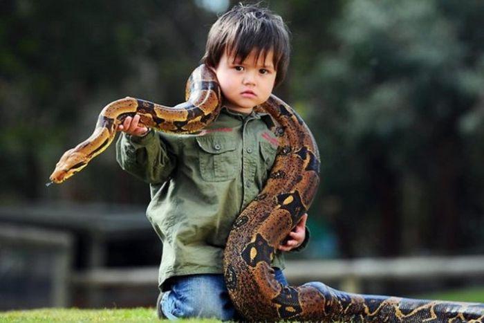 У малыша опасные друзья (11 фото)