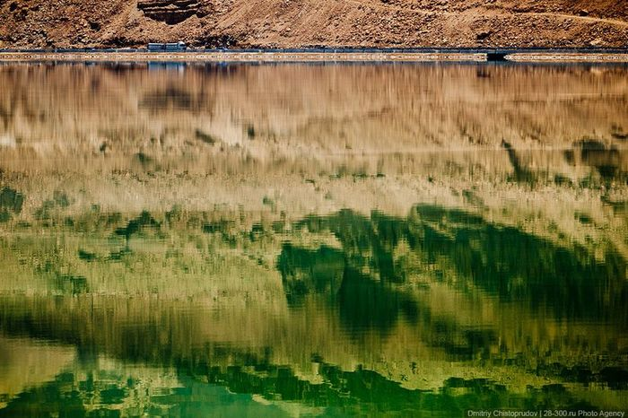 Мертвое море в Израиле (42 фото)